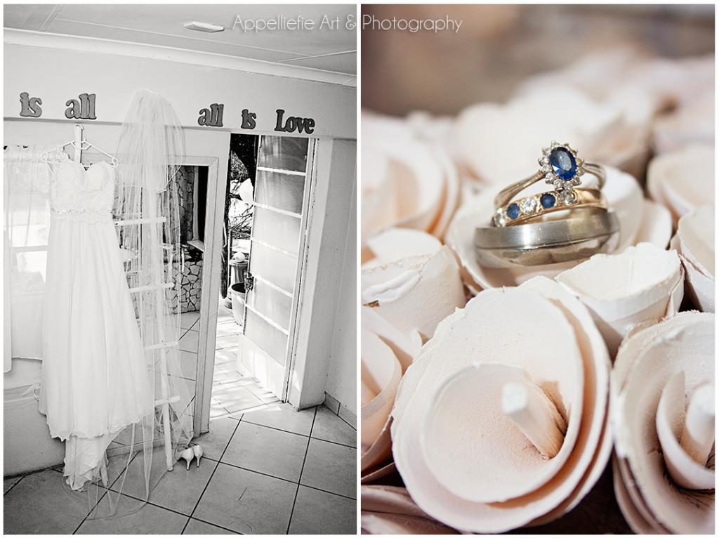 Appelliefie_Bloemfontein_Wedding_GooseHill_1