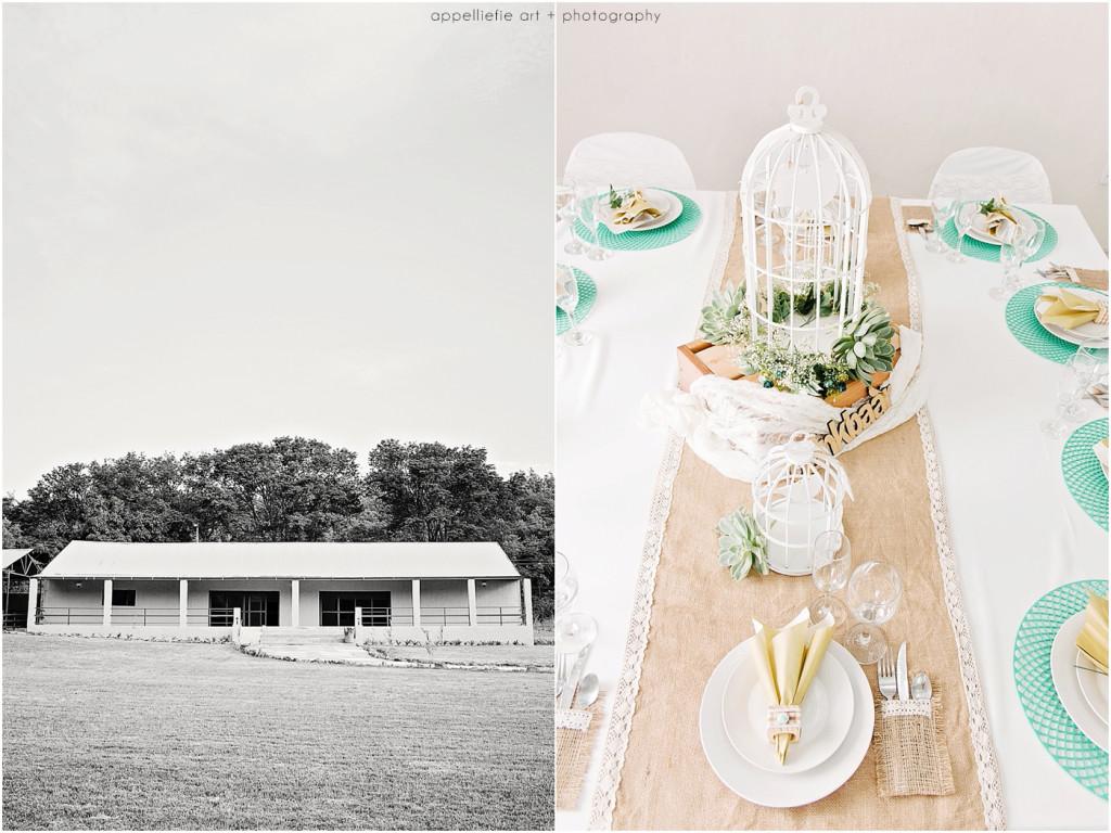 AppelliefieART_pretoria-wedding-photographer_0002