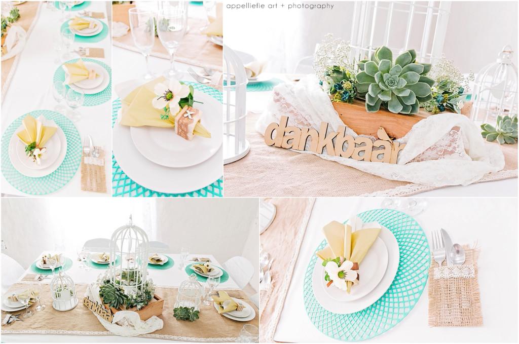 AppelliefieART_pretoria-wedding-photographer_0003