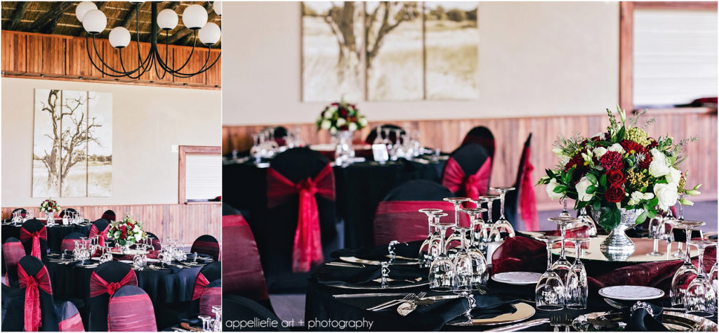 bernadettedawie-wedding-safari-pretoria-photographer_appelliefieart_0007