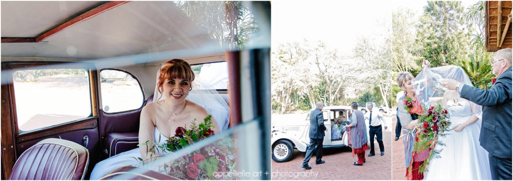 bernadettedawie-wedding-safari-pretoria-photographer_appelliefieart_0064