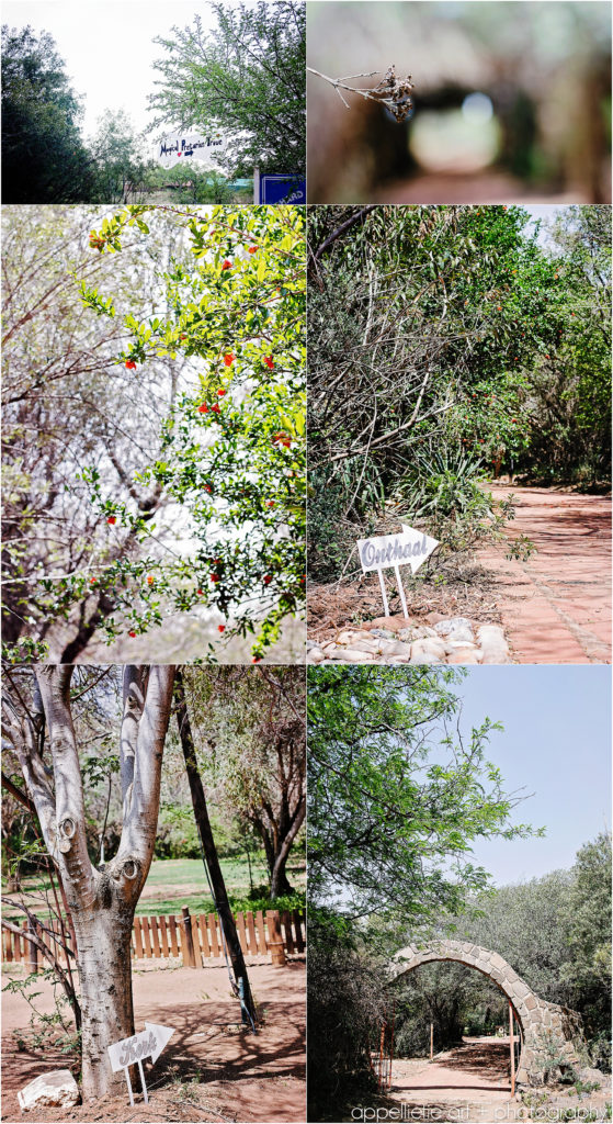 MCwedding_appelliefie_PRETORIA-Photographer_0016